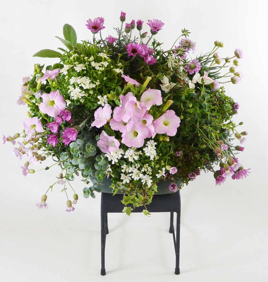 花いっぱいのハンギング