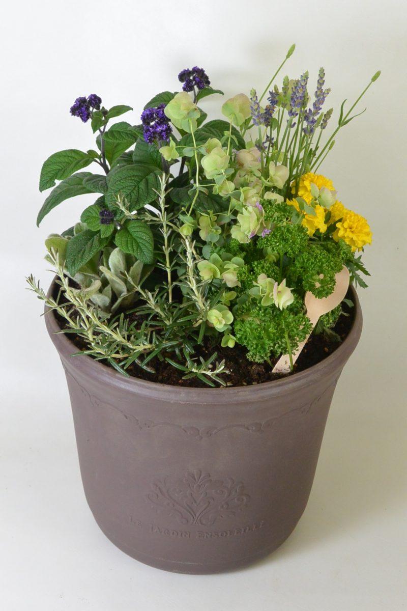 香り豊かなハーブの寄せ植え