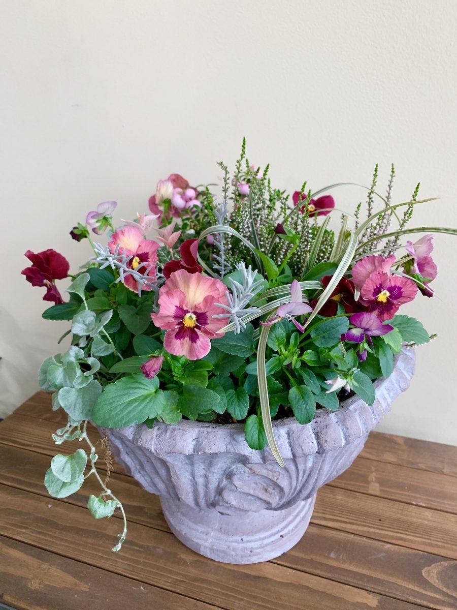 花色豊富なパンジー・ビオラを使ってカラフルでゴージャスな寄せ植え